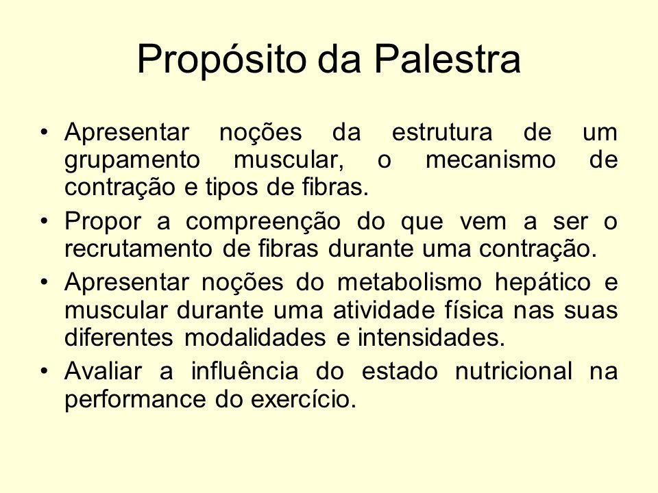 Propósito da Palestra Apresentar noções da estrutura de um grupamento muscular, o mecanismo de contração e tipos de fibras.
