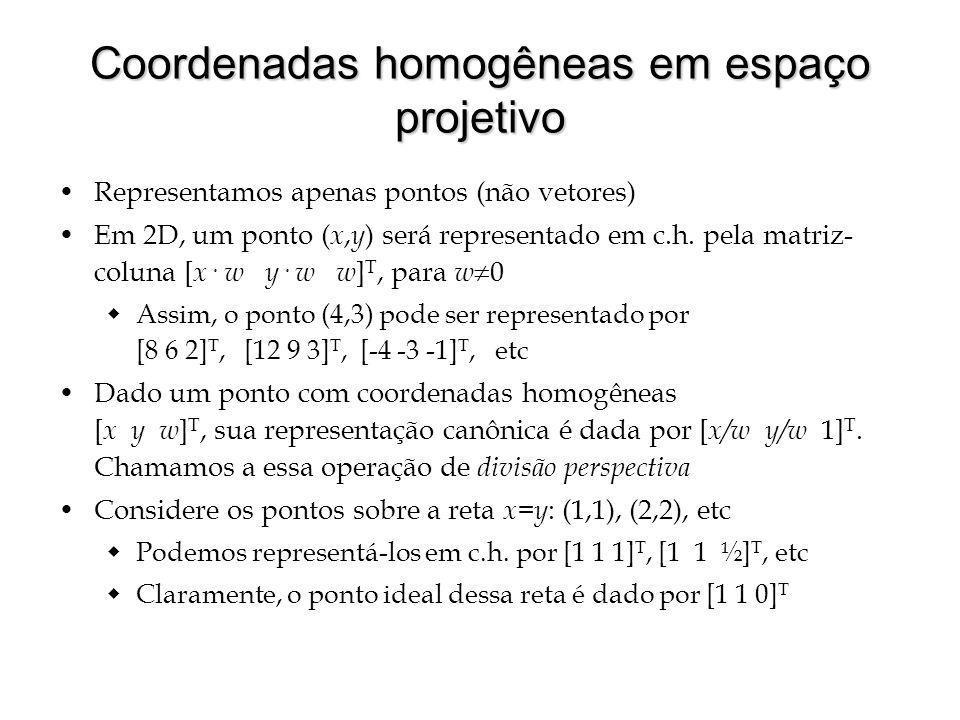 Coordenadas homogêneas em espaço projetivo Representamos apenas pontos (não vetores) Em 2D, um ponto ( x, y ) será representado em c.h. pela matriz- c