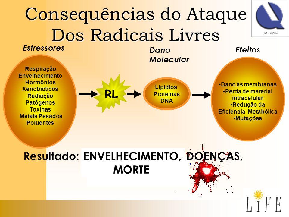 Consequências do Ataque Dos Radicais Livres Resultado: ENVELHECIMENTO, DOENÇAS, MORTE Respiração Envelhecimento Hormônios Xenobioticos Radiação Patóge