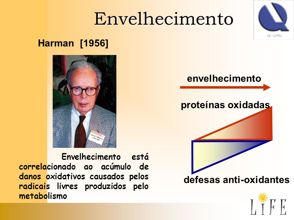 Envelhecimento Harman [1956] Envelhecimento está correlacionado ao acúmulo de danos oxidativos causados pelos radicais livres produzidos pelo metaboli