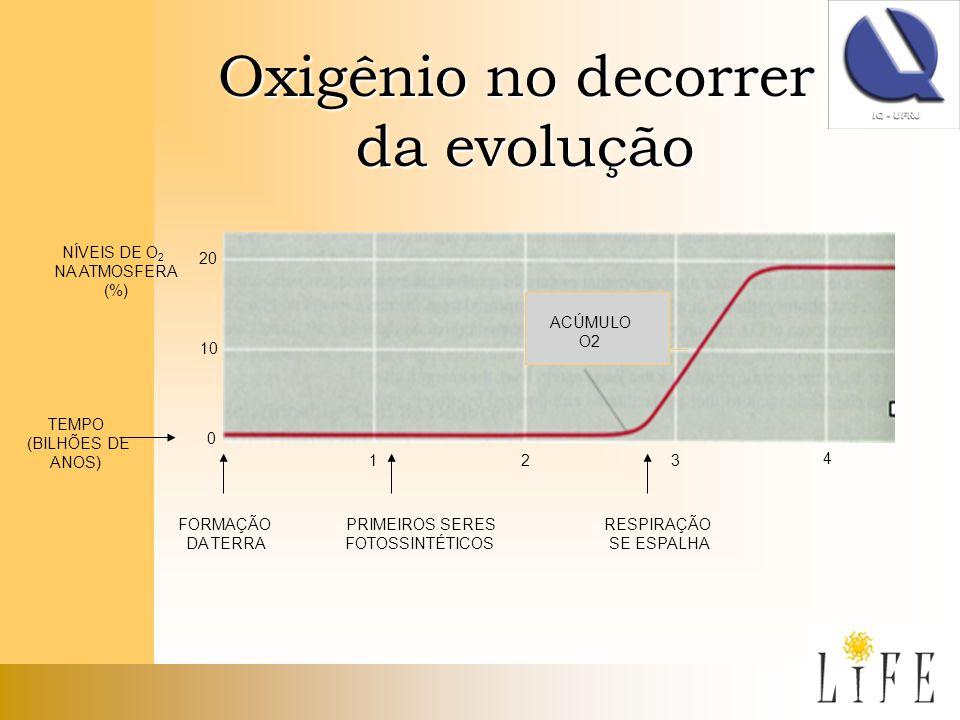 Oxigênio no decorrer da evolução da evolução 20 10 0 TEMPO (BILHÕES DE ANOS) NÍVEIS DE O 2 NA ATMOSFERA (%) FORMAÇÃO DA TERRA PRIMEIROS SERES FOTOSSIN