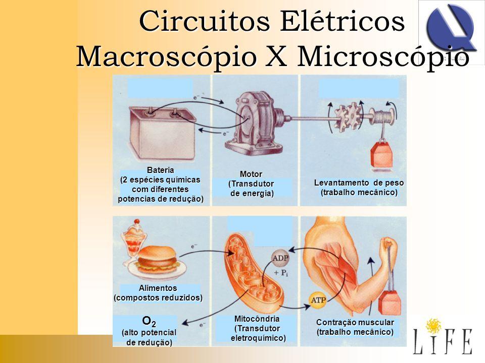 Circuitos Elétricos Macroscópio X Microscópio Mitocôndria(Transdutor eletroquímico) eletroquímico) Contração muscular (trabalho mecânico) Bateria (2 e