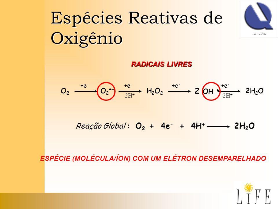 Espécies Reativas de Oxigênio O2O2 O 2 +e - 2H + H2O2H2O2 2 OH 2H 2 O +e - 2H + +e - Reação Global : O 2 + 4e - + 4H + 2H 2 O RADICAIS LIVRES ESPÉCIE