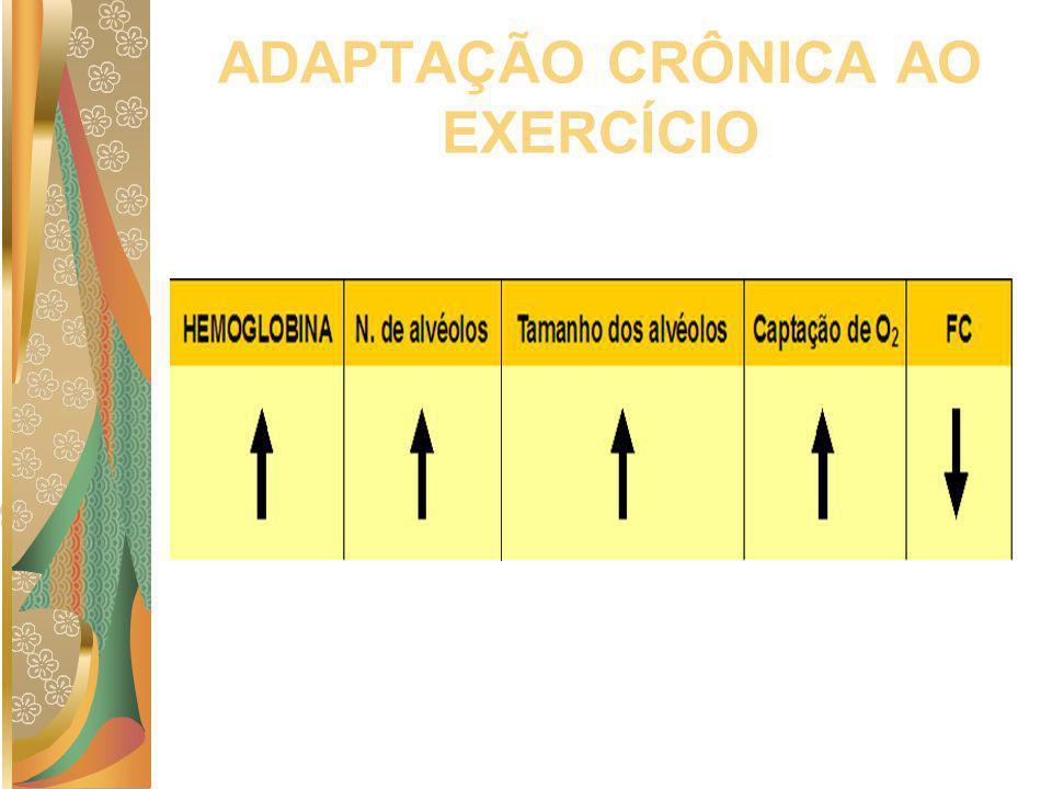 ADAPTAÇÃO CRÔNICA AO EXERCÍCIO