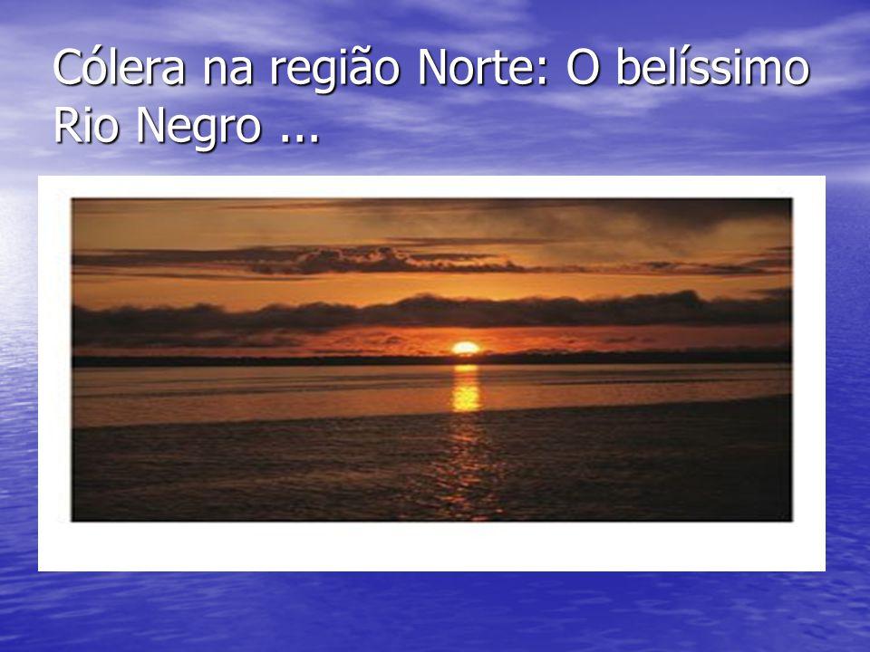 Cólera na região Norte: O belíssimo Rio Negro...