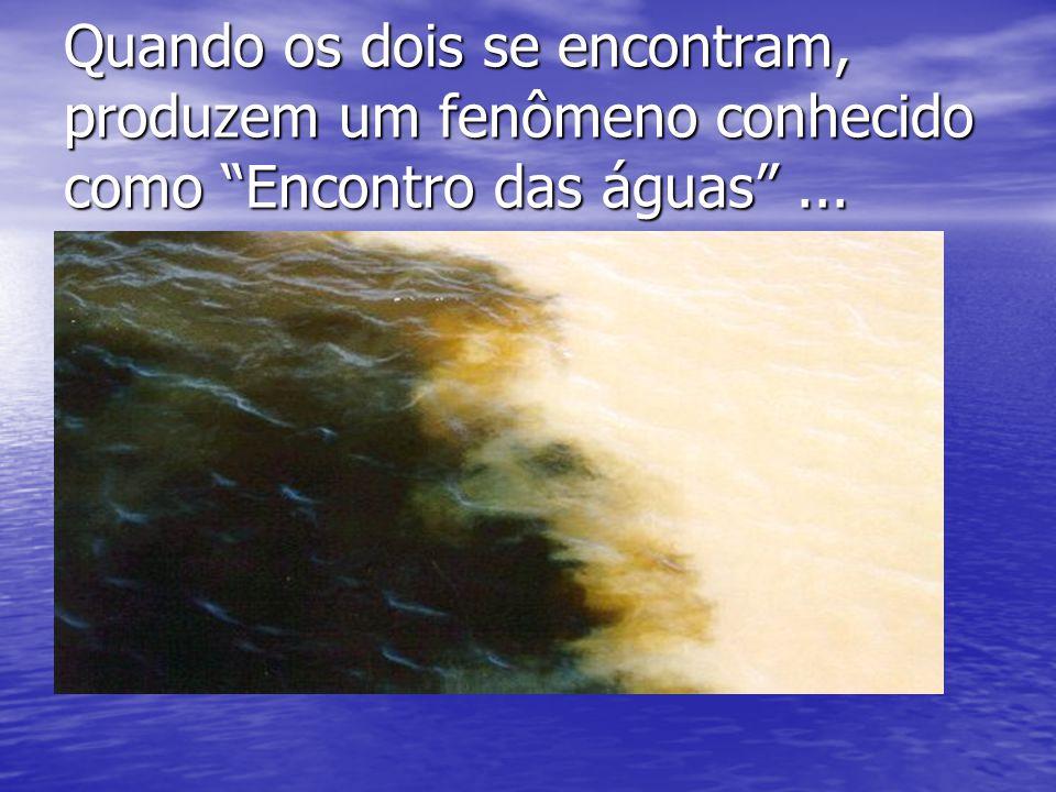 Quando os dois se encontram, produzem um fenômeno conhecido como Encontro das águas...