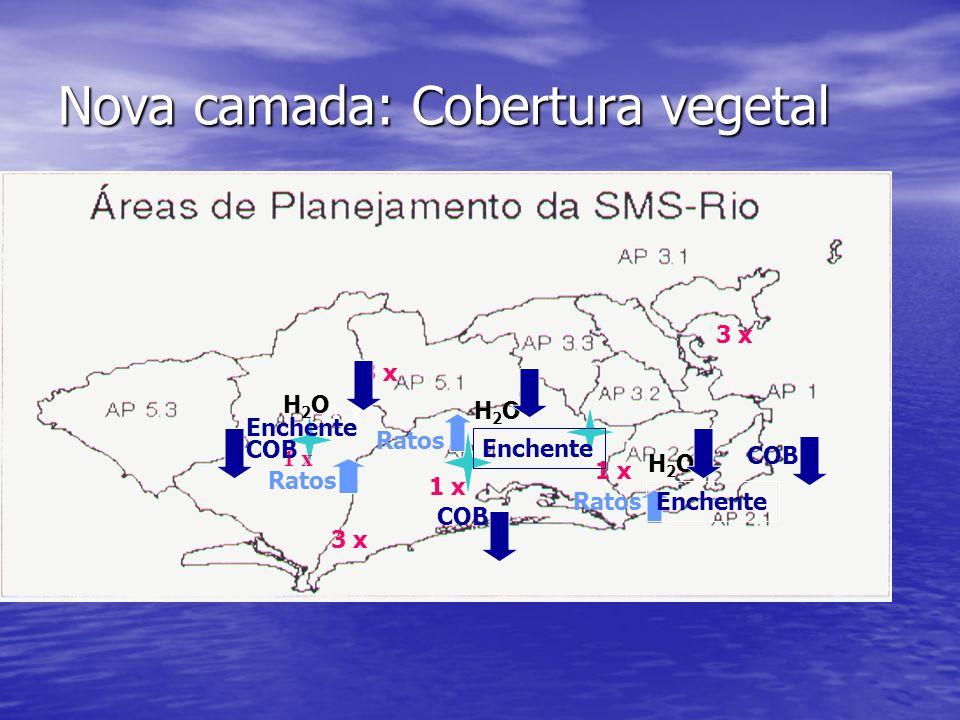 Nova camada: Cobertura vegetal 1 x 3 x Ratos H2OH2O H2OH2O H2OH2O Enchente COB