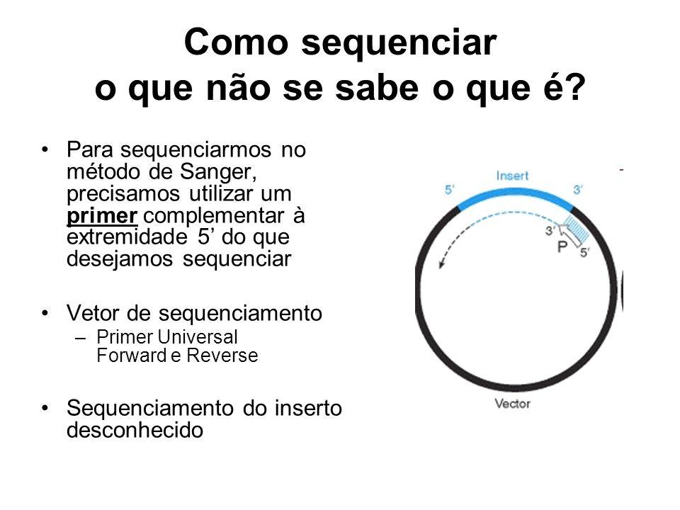 Como sequenciar o que não se sabe o que é? Para sequenciarmos no método de Sanger, precisamos utilizar um primer complementar à extremidade 5 do que d