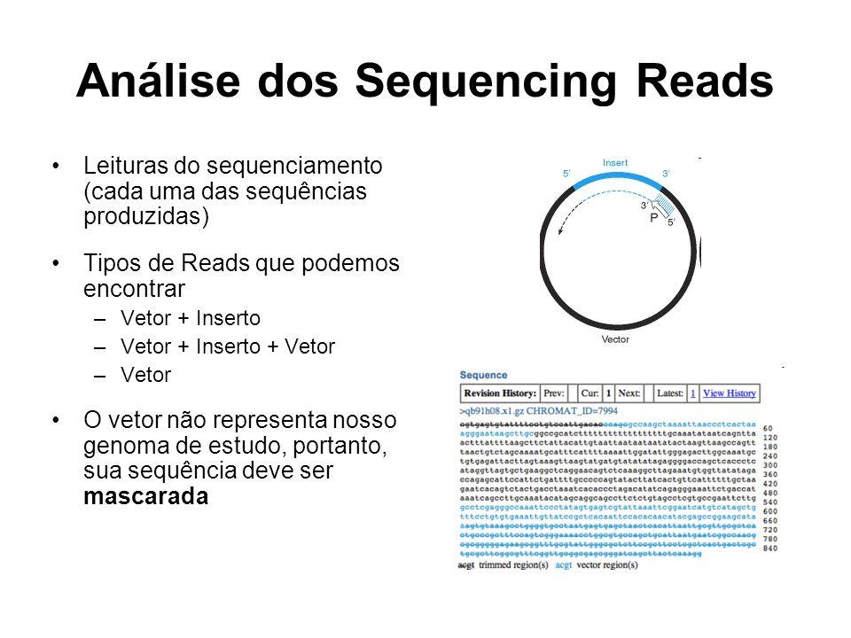 Análise dos Sequencing Reads Leituras do sequenciamento (cada uma das sequências produzidas) Tipos de Reads que podemos encontrar –Vetor + Inserto –Ve