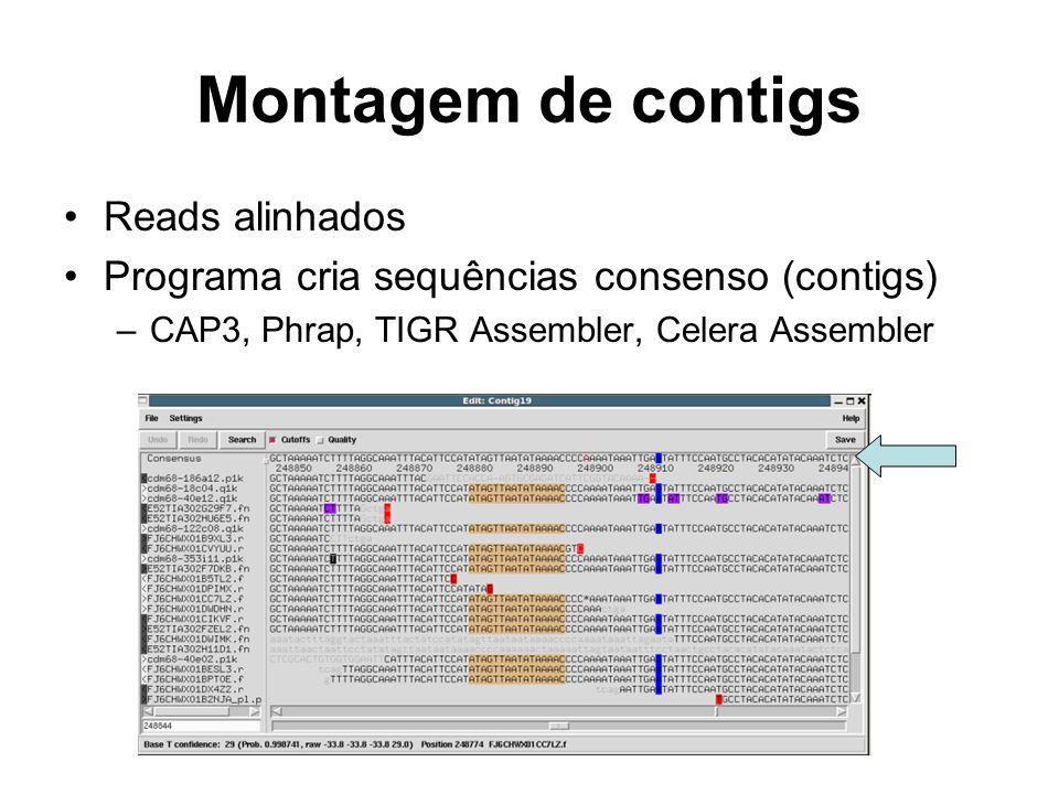 Montagem de contigs Reads alinhados Programa cria sequências consenso (contigs) –CAP3, Phrap, TIGR Assembler, Celera Assembler