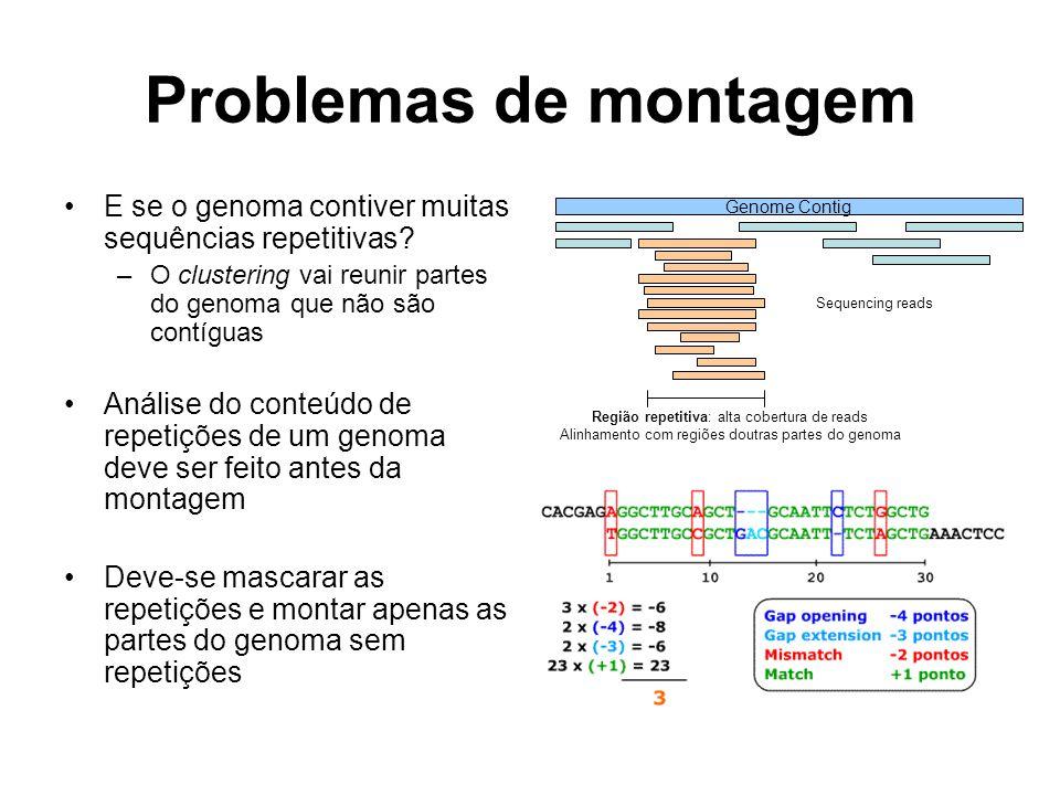 Problemas de montagem E se o genoma contiver muitas sequências repetitivas? –O clustering vai reunir partes do genoma que não são contíguas Análise do