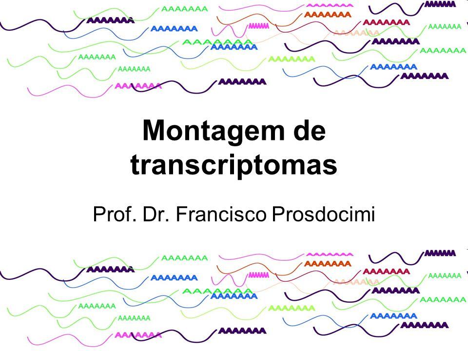 Montagem de transcriptomas Prof. Dr. Francisco Prosdocimi