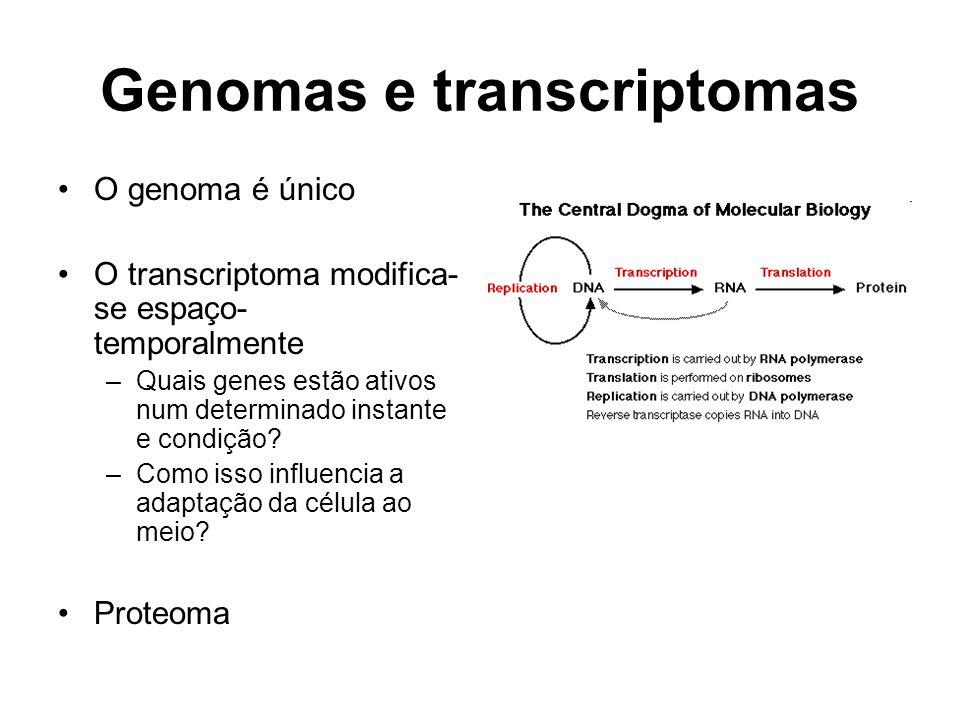 Genomas e transcriptomas O genoma é único O transcriptoma modifica- se espaço- temporalmente –Quais genes estão ativos num determinado instante e cond