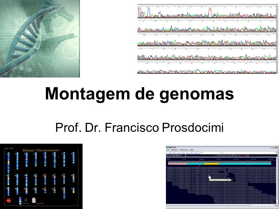 Montagem de genomas Prof. Dr. Francisco Prosdocimi