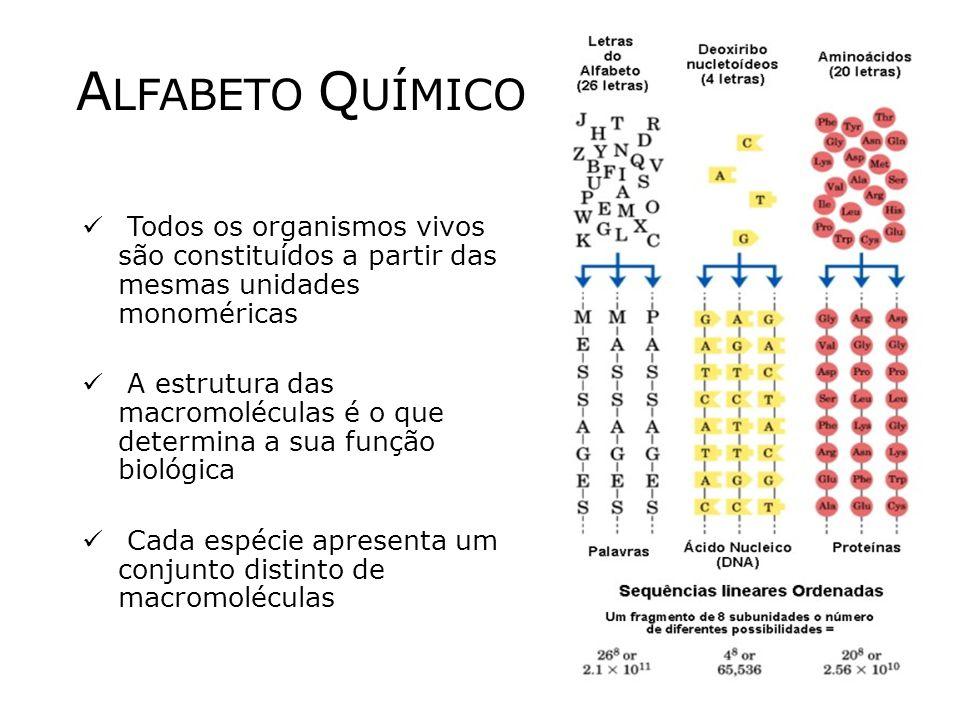 A LFABETO Q UÍMICO Todos os organismos vivos são constituídos a partir das mesmas unidades monoméricas A estrutura das macromoléculas é o que determina a sua função biológica Cada espécie apresenta um conjunto distinto de macromoléculas