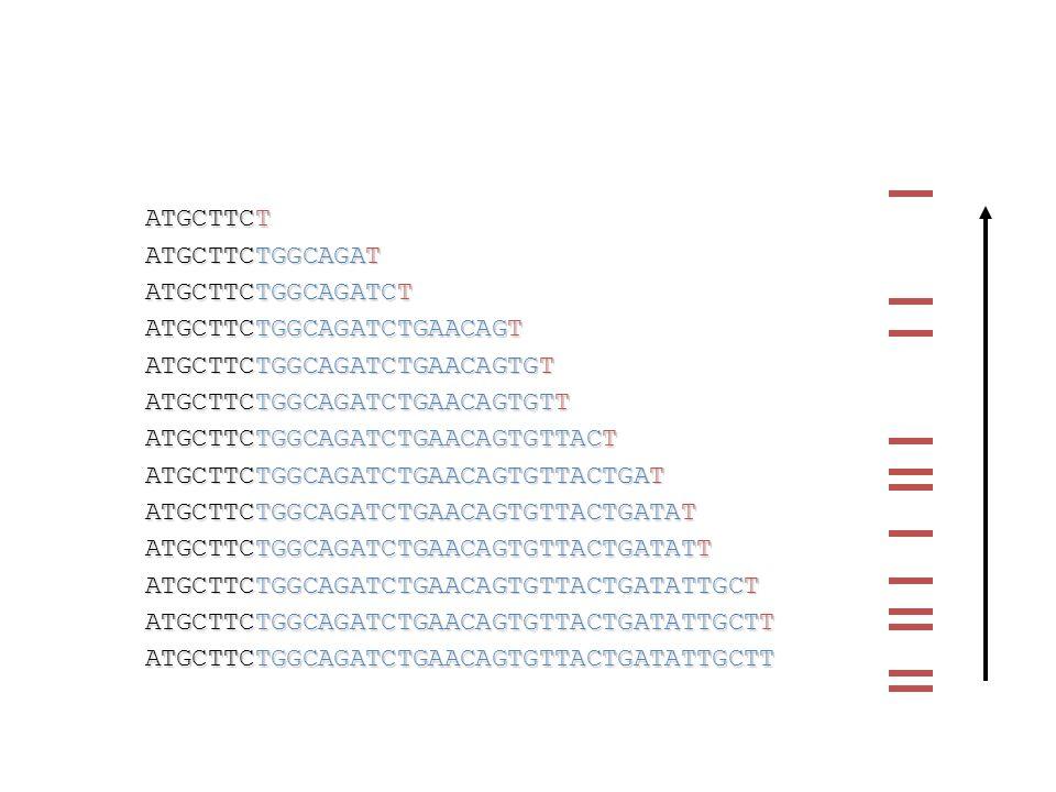 ATGCTTCTGGCAGAT ATGCTTCTGGCAGATCTGAACAGTGTTACTGAT ATGCTTCTGGCAGATCTGAACAGTGT ATGCTTCTGGCAGATCTGAACAGTGTTACTGATATTGCTT ATGCTTCTGGCAGATCTGAACAGTGTTACTGATAT ATGCTTCTGGCAGATCTGAACAGTGTTACT ATGCTTCTGGCAGATCTGAACAGT ATGCTTCTGGCAGATCTGAACAGTGTTACTGATATTGCT ATGCTTCTGGCAGATCTGAACAGTGTTACTGATATT ATGCTTCT ATGCTTCTGGCAGATCT ATGCTTCTGGCAGATCTGAACAGTGTTACTGATATTGCTT ATGCTTCTGGCAGATCTGAACAGTGTT