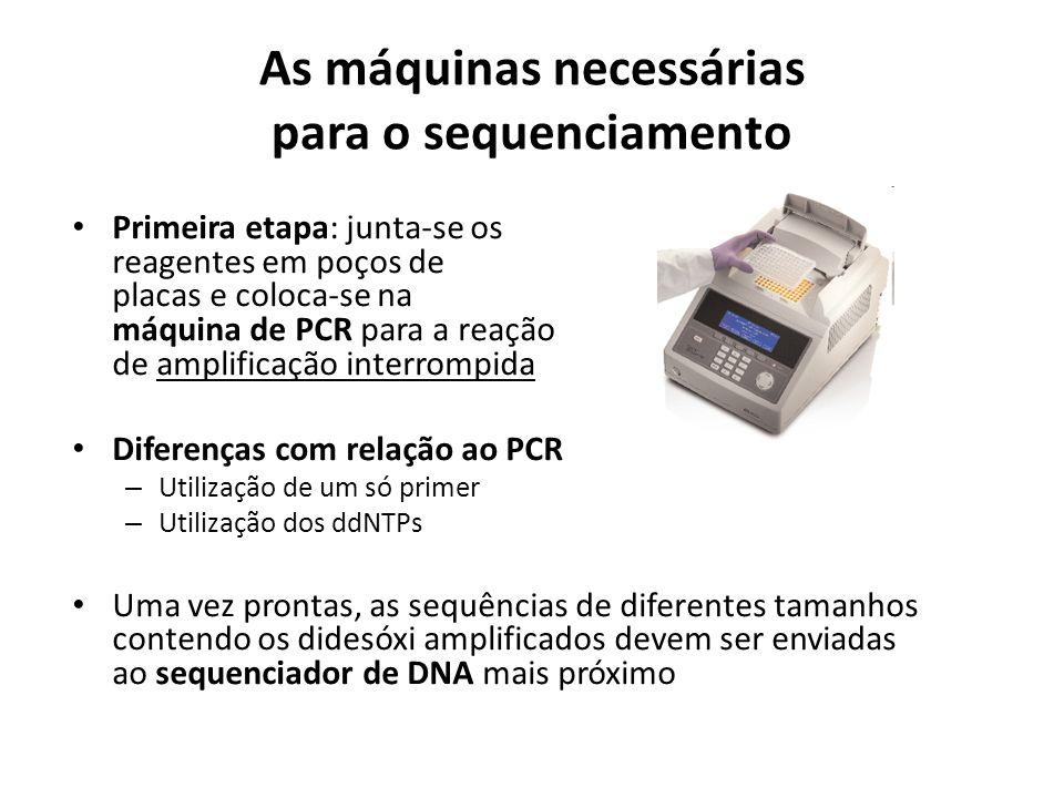 As máquinas necessárias para o sequenciamento Primeira etapa: junta-se os reagentes em poços de placas e coloca-se na máquina de PCR para a reação de amplificação interrompida Diferenças com relação ao PCR – Utilização de um só primer – Utilização dos ddNTPs Uma vez prontas, as sequências de diferentes tamanhos contendo os didesóxi amplificados devem ser enviadas ao sequenciador de DNA mais próximo
