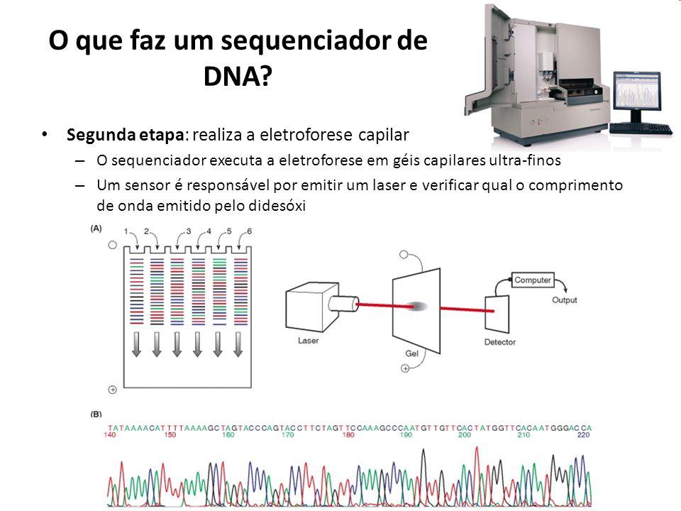 O que faz um sequenciador de DNA.