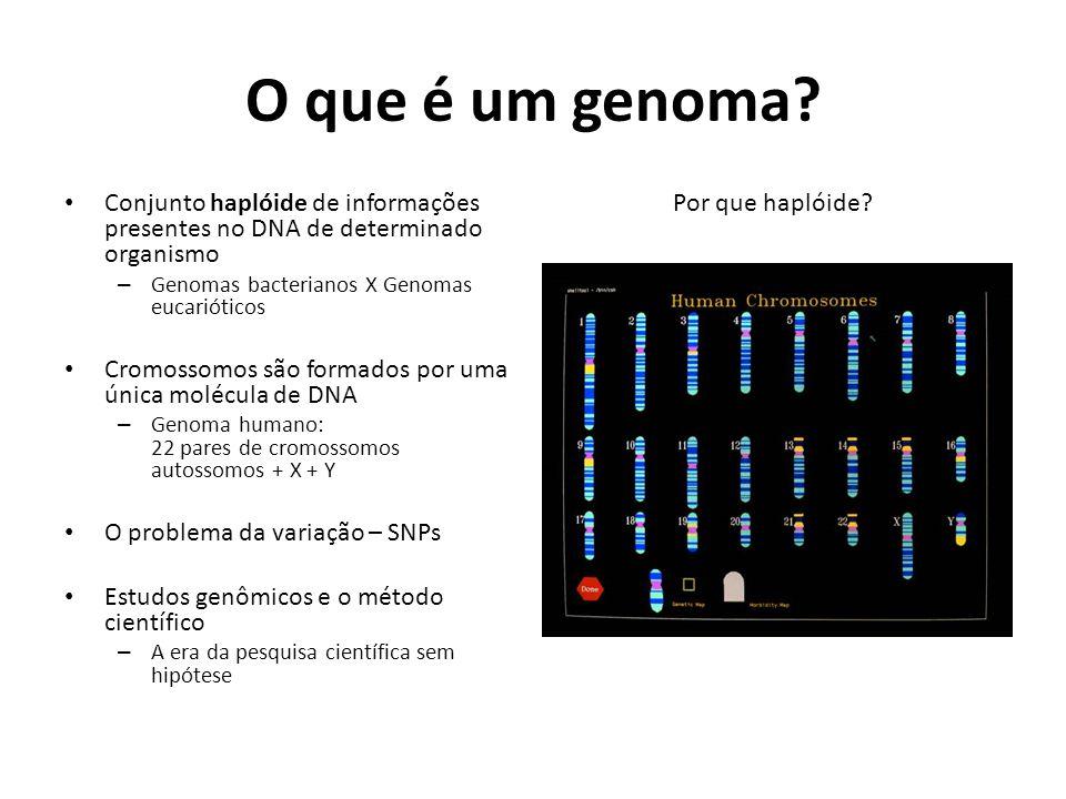 O que é um genoma.