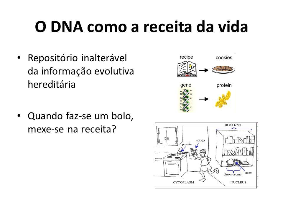 O DNA como a receita da vida Repositório inalterável da informação evolutiva hereditária Quando faz-se um bolo, mexe-se na receita?