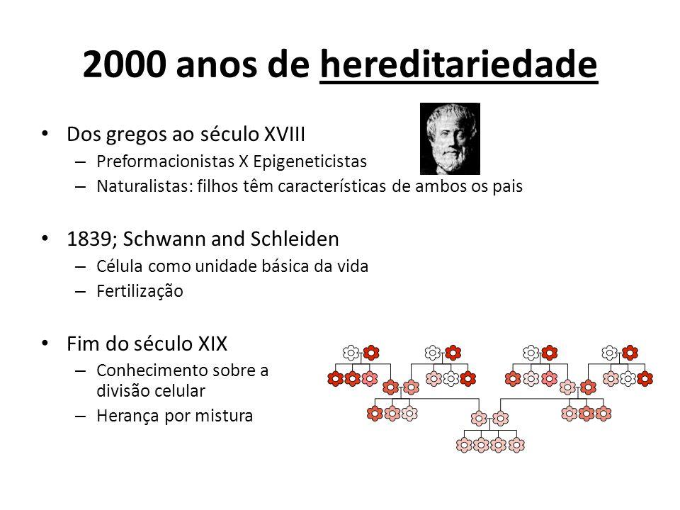 2000 anos de hereditariedade Dos gregos ao século XVIII – Preformacionistas X Epigeneticistas – Naturalistas: filhos têm características de ambos os p