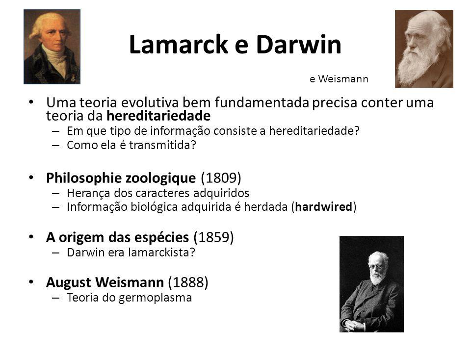Lamarck e Darwin Uma teoria evolutiva bem fundamentada precisa conter uma teoria da hereditariedade – Em que tipo de informação consiste a hereditarie