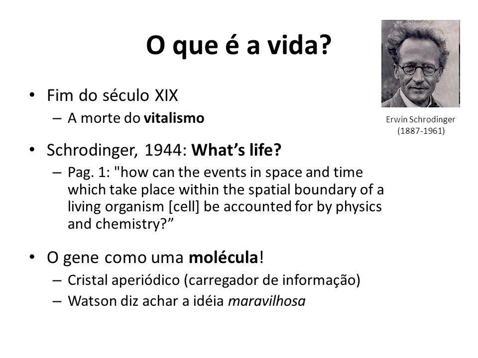 O que é a vida? Fim do século XIX – A morte do vitalismo Schrodinger, 1944: Whats life? – Pag. 1:
