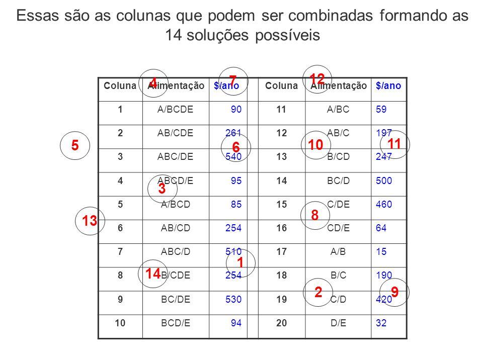 Essas são as colunas que podem ser combinadas formando as 14 soluções possíveis ColunaAlimentação$/anoColunaAlimentação$/ano 1A/BCDE9011A/BC59 2AB/CDE
