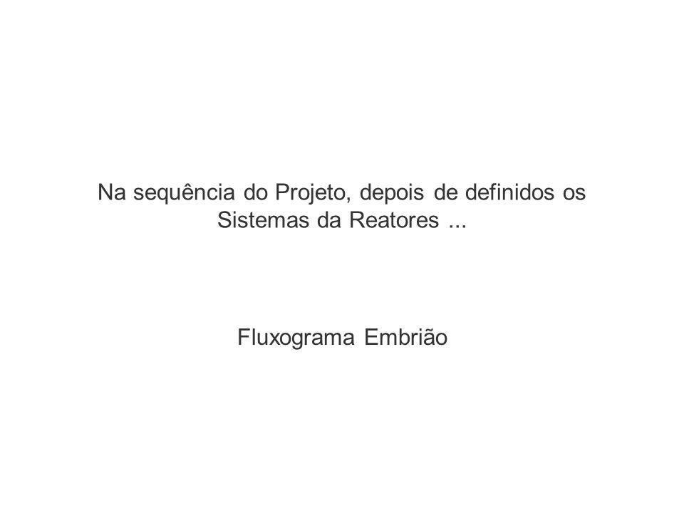 Na sequência do Projeto, depois de definidos os Sistemas da Reatores... Fluxograma Embrião