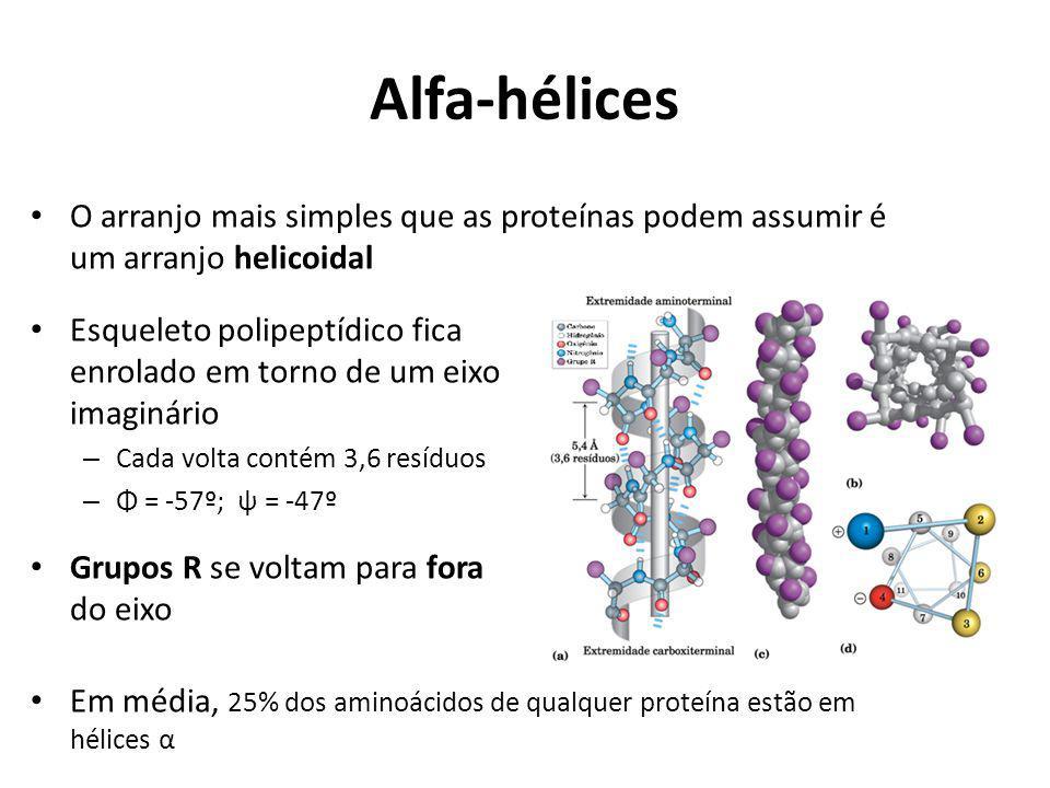 Alfa-hélices O arranjo mais simples que as proteínas podem assumir é um arranjo helicoidal Esqueleto polipeptídico fica enrolado em torno de um eixo i