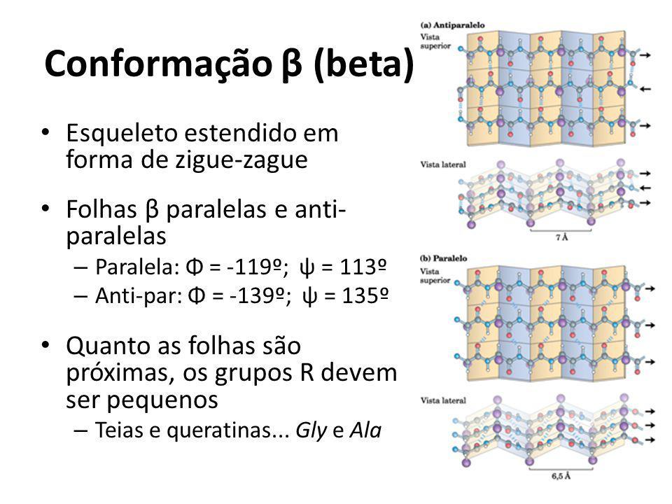 Conformação β (beta) Esqueleto estendido em forma de zigue-zague Folhas β paralelas e anti- paralelas – Paralela: Φ = -119º; ψ = 113º – Anti-par: Φ =