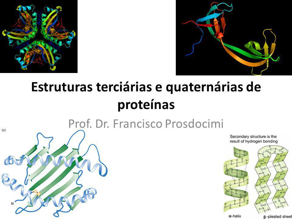 Estruturas terciárias e quaternárias de proteínas Prof. Dr. Francisco Prosdocimi
