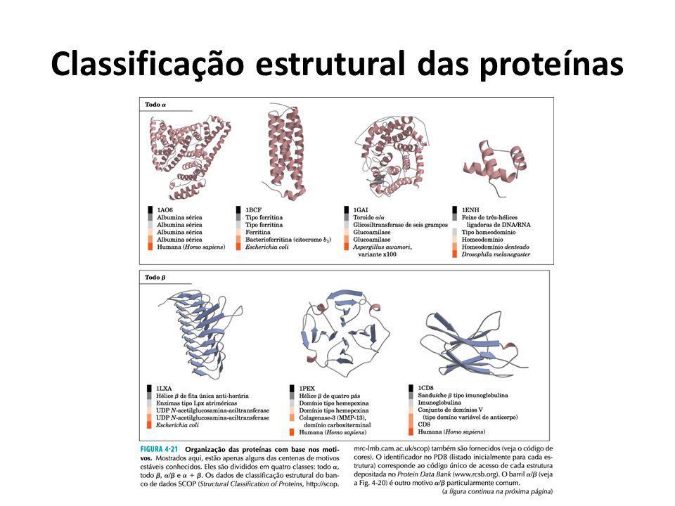 Classificação estrutural das proteínas