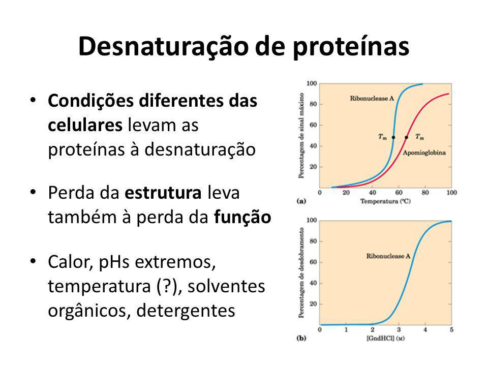 Desnaturação de proteínas Condições diferentes das celulares levam as proteínas à desnaturação Perda da estrutura leva também à perda da função Calor,