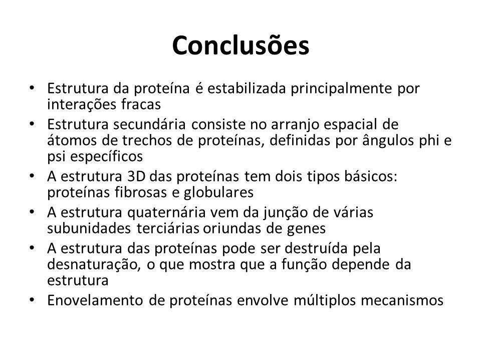 Conclusões Estrutura da proteína é estabilizada principalmente por interações fracas Estrutura secundária consiste no arranjo espacial de átomos de tr