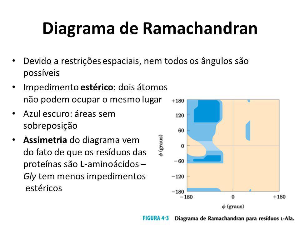 Diagrama de Ramachandran Devido a restrições espaciais, nem todos os ângulos são possíveis Impedimento estérico: dois átomos não podem ocupar o mesmo