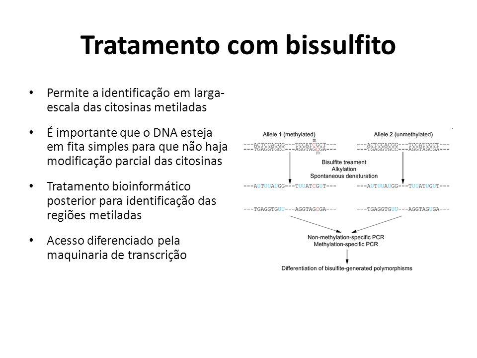 Tratamento com bissulfito Permite a identificação em larga- escala das citosinas metiladas É importante que o DNA esteja em fita simples para que não