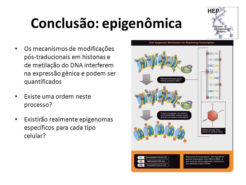 Conclusão: epigenômica Os mecanismos de modificações pós-traducionais em histonas e de metilação do DNA interferem na expressão gênica e podem ser qua