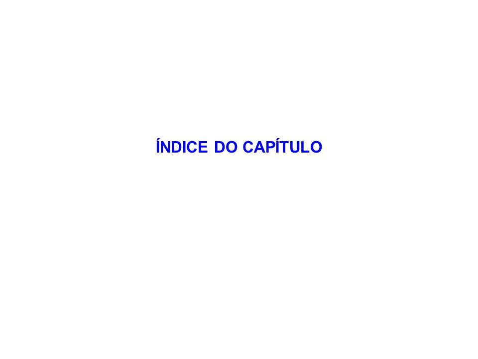 ÍNDICE DO CAPÍTULO