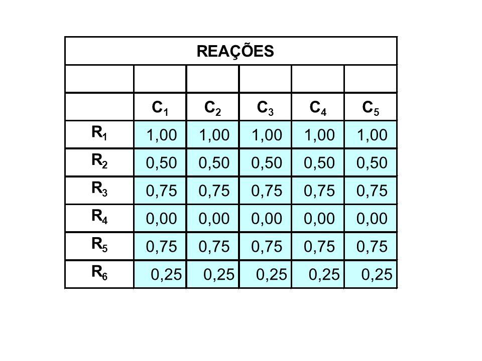 C1C1 C2C2 C3C3 C4C4 C5C5 R1R1 1,00 R2R2 0,50 R3R3 0,75 R4R4 0,00 R5R5 0,75 R6R6 0,25 REAÇÕES