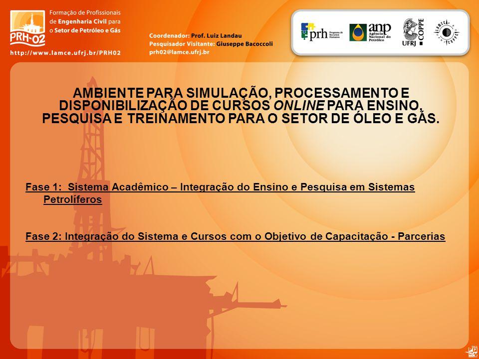 Fase 1: Sistema Acadêmico – Integração do Ensino e Pesquisa em Sistemas Petrolíferos Fase 2: Integração do Sistema e Cursos com o Objetivo de Capacita