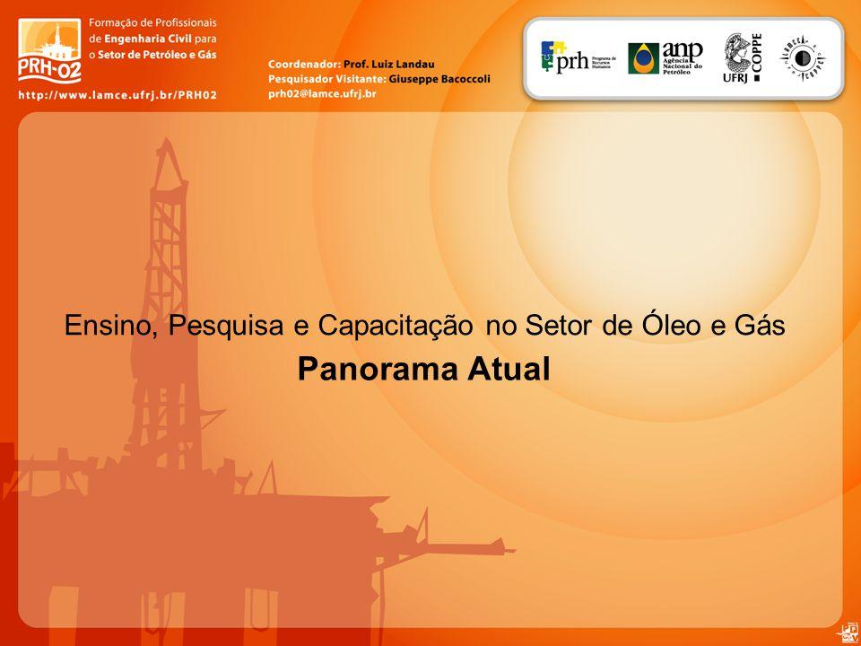 Panorama Atual Ensino, Pesquisa e Capacitação no Setor de Óleo e Gás