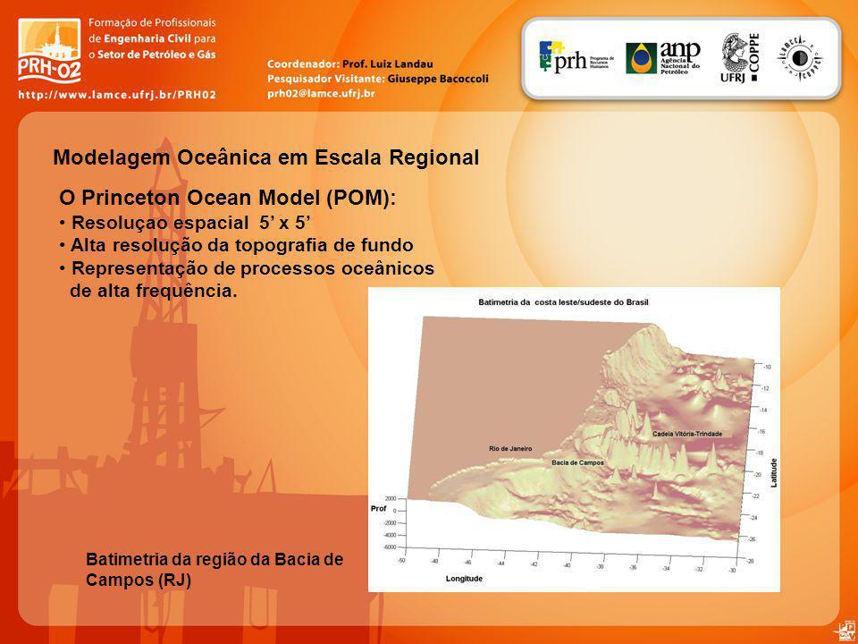 Modelagem Oceânica em Escala Regional O Princeton Ocean Model (POM): Resoluçao espacial 5 x 5 Alta resolução da topografia de fundo Representação de processos oceânicos de alta frequência.