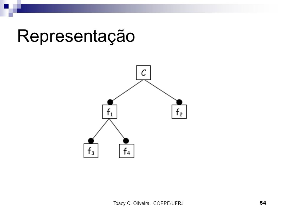 Toacy C. Oliveira - COPPE/UFRJ 54 Representação