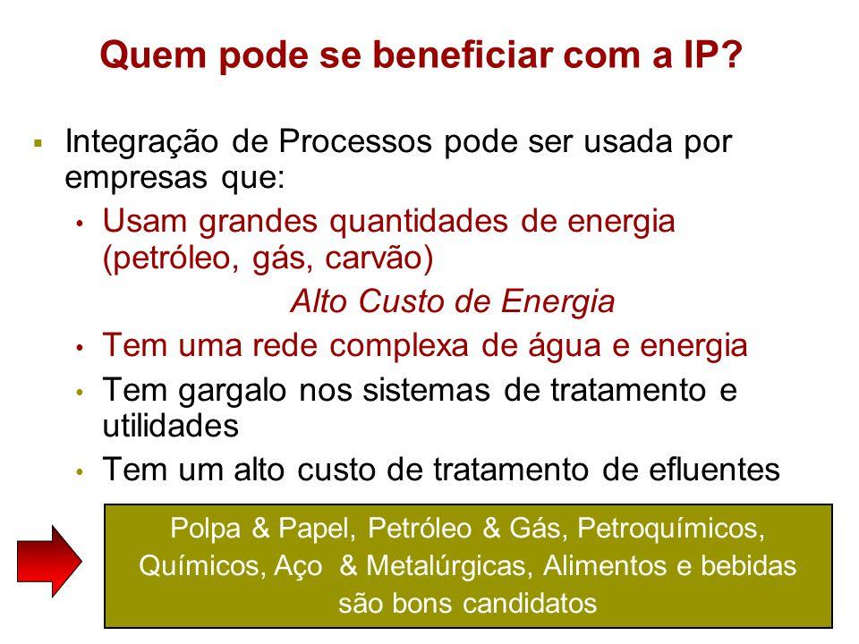 Polpa & Papel, Petróleo & Gás, Petroquímicos, Químicos, Aço & Metalúrgicas, Alimentos e bebidas são bons candidatos Quem pode se beneficiar com a IP?