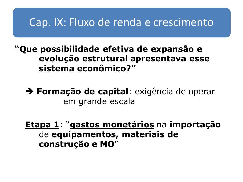 Cap. IX: Fluxo de renda e crescimento Que possibilidade efetiva de expansão e evolução estrutural apresentava esse sistema econômico? Formação de capi