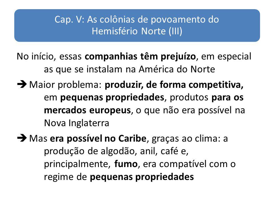 Cap. V: As colônias de povoamento do Hemisfério Norte (III) No início, essas companhias têm prejuízo, em especial as que se instalam na América do Nor