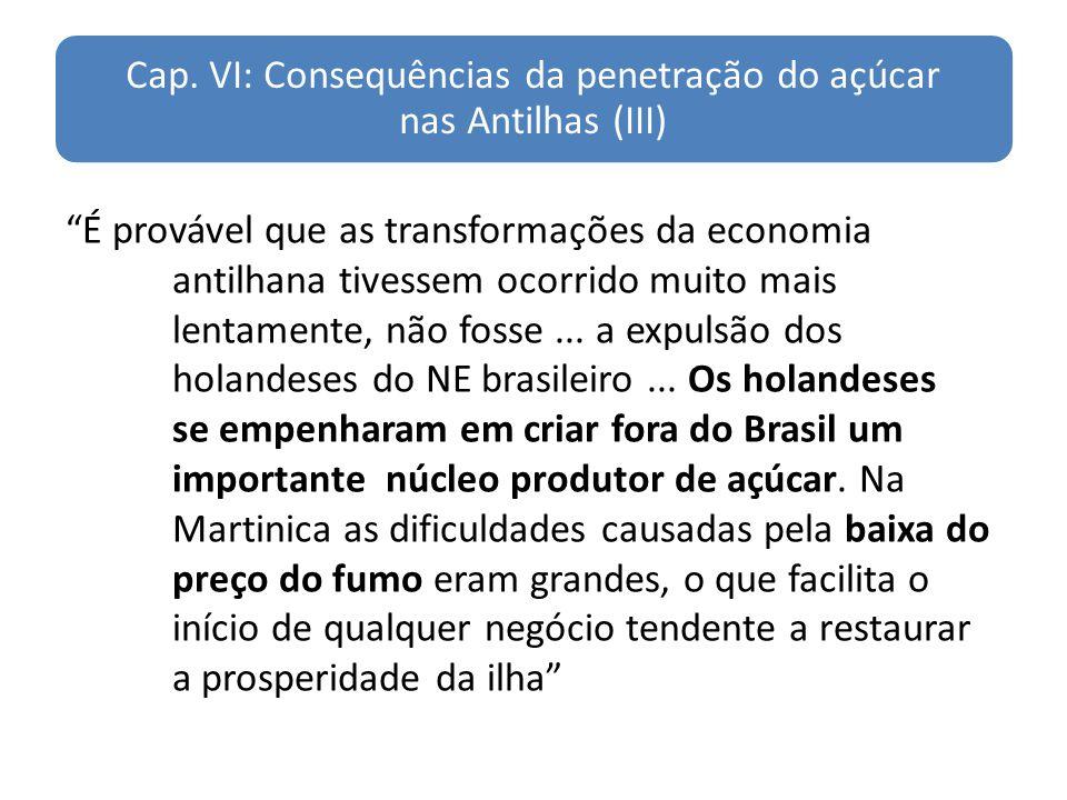 Cap. VI: Consequências da penetração do açúcar nas Antilhas (III) É provável que as transformações da economia antilhana tivessem ocorrido muito mais