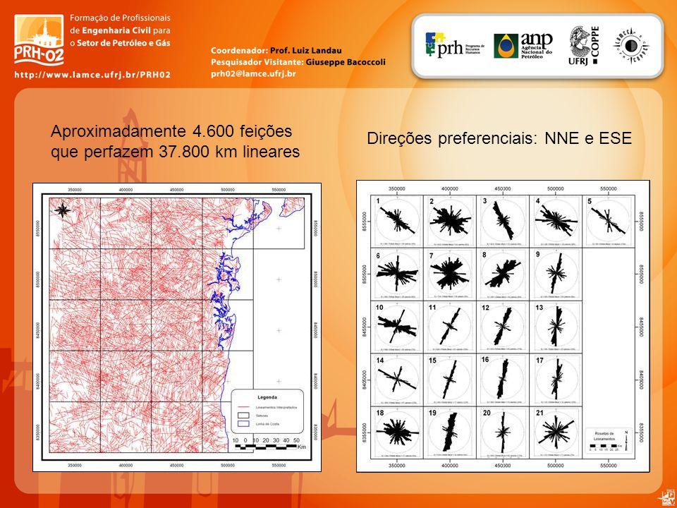 Aproximadamente 4.600 feições que perfazem 37.800 km lineares Direções preferenciais: NNE e ESE