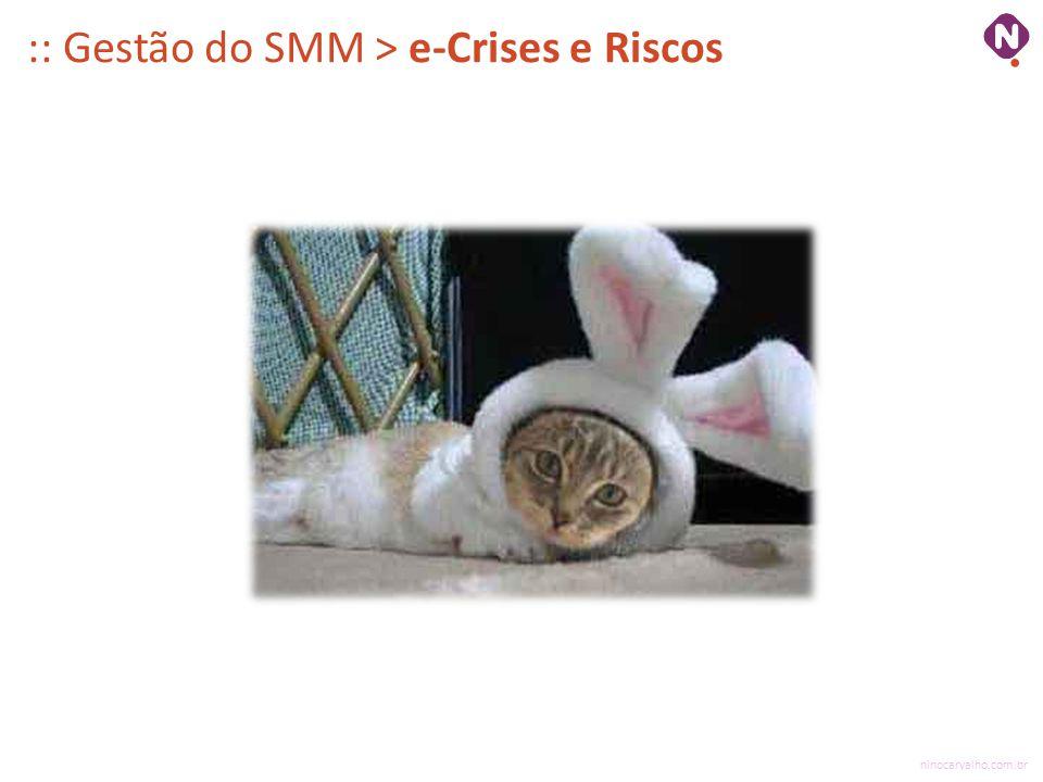 :: Gestão do SMM > e-Crises e Riscos